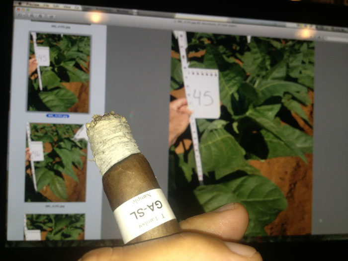 Comparing the cigar to the data